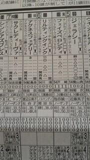 新聞(スイートピーS)_3.jpg
