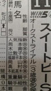 新聞(スイートピーS)_4.jpg